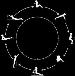 cirkeltræning