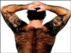 Her ses hår på ryggen hos en mand