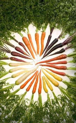 En sund livsstil med gulerødder