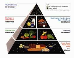 Næringsstoffer og kostpyramiden