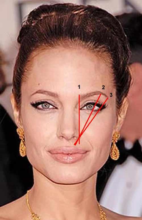 Идеальная форма бровей определяется тремя прямыми линиями. Первая