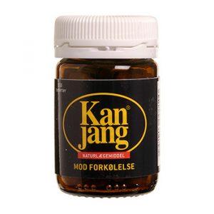 Kan Jang 120 mg 100 tab