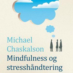 Mindfulness Og Stresshåndtering I Arbejdslivet - Michael Chaskalson - Bog