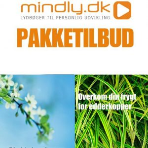 Slip fri af panikangst og panikanfald + Araknofobi (Pakketilbud)